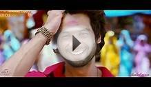 The Best of Bollywood 2013 Mashup